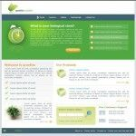 raw-html-theme-home-page